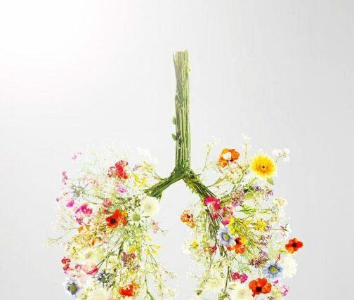 Βαθιά αναπνοή και ανοσοποιητικό