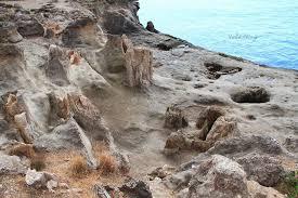 Απολιθωμένο Δάσος Λακωνίας.